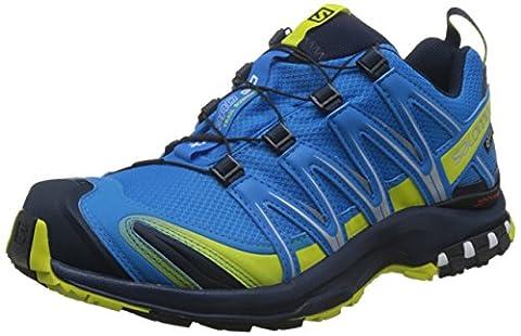 Salomon - XA Pro 3D GTX - Chaussures de Course à Pied et Trail Running - Synthétique/Textile - Homme - Multicolore (Cloisonné/Navy Blazer/Sulphur Spring) - 48 EU