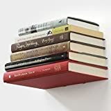 Anant Invisible Conceal Floating Book Shelf (Color : White)