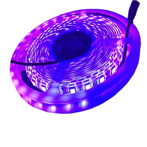 Electronic Components & Supplies 400nm Led Ultra Violet Light Emitting Diode Lamp Moderate Price 100pcs Uv Led Smd 5050 Chip Purple Surface Mount Bead 60ma Ultraviolet 395nm