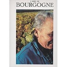 L'aire de Bourgogne