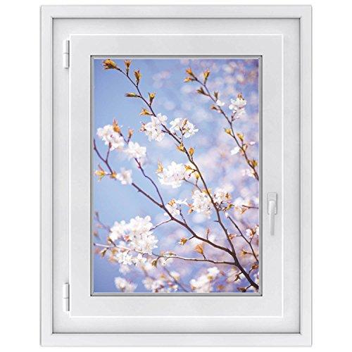 Premium Fensterbild | selbsklebende Fensterfolie - dekorative Klebe-Folie für Fenster - hochwertige Fensteraufkleber | Home Dekoration - Fenstergestaltung | Fensterfolie 50 x 70 cm - Apple Blossoms