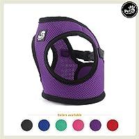 Pets&Partner Hundegeschirr Soft Air Mesh Weste in Verschiedenen Farben für Kleine bis Mittelgroße Hunde, XS, Violett