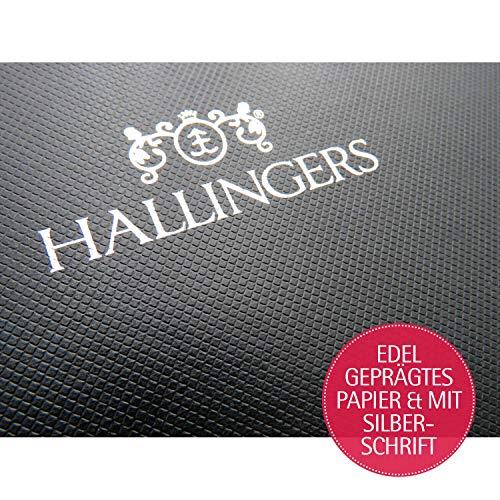 513BxyOmOnL - Hallingers 5er Premium-Grill-Gewürze als Geschenk-Set (95g) - Grilllust (MiniDeluxe-Box) - zu Sommer Grillen Für Ihn