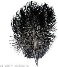 20x grandes plumas de avestruz teñido, 20