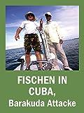 Fischen in Cuba, Barakuda Attacke