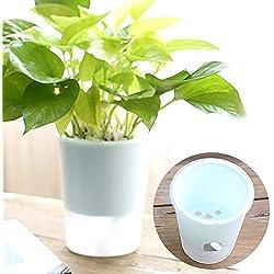 Bewässerungs-Pflanztopf, Kunststoff, transparent, selbstwässerend, für Zimmerpflanzen und Kräuter, für alle Hauspflanzen, Blumen, Kräuter, afrikanische Veilchen, Sukkulenten, farblos, 10x8x12cm