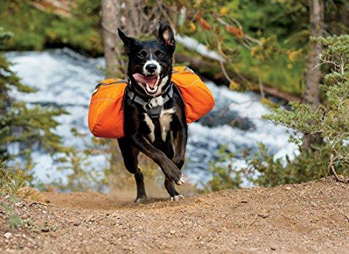 Ruffwear 50101-815M Hunderucksack, Medium, campfire orange -