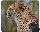 Yanteng Tappetini per Mouse da Gioco, tappetini per Mouse per Leopardi delle Famiglie di Gatti ghepardi