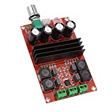 #6: Homyl 2x100W TPA3116D2 Dual Track Digital Audio Amplifier Board 12-24V for Arduino