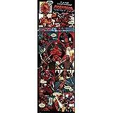 Póster de Puerta Deadpool Comic - I'm the Insufferable (53cm x 158cm) + embalaje para regalo
