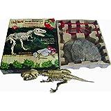 Squelette de Dinosaure Tyrannosaurus Rex Kit de Fouille Jeu Archéologie Jouet