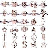 VIKI LYNN Perles Pour Bracelets à Breloques Idéal pour la Fabrication de Bijoux lot de 30 Style Aléatoire