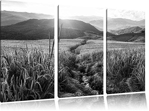 paddy-plantation-art-asia-w-3-pices-image-image-toile-120x80-b-sur-toile-xxl-normes-photos-complteme