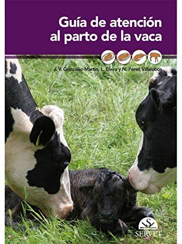 Guía de atención al parto de la vaca