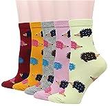 Cansok 5 Pack Women's Hedgehog Socks Fun Novelty Dress Crew socks (Hedgehog)