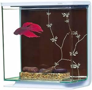 Marina Aquarium Betta Kit Contemporain 3 L