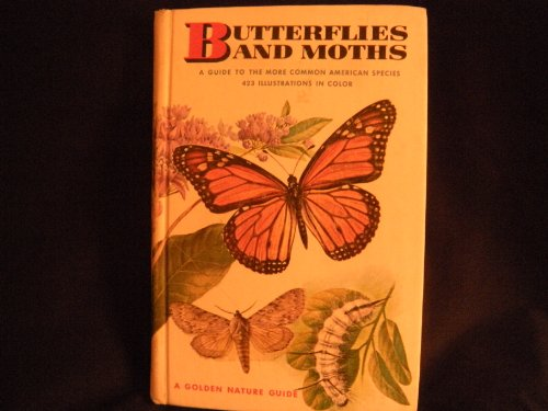 Butterflies and Moths (Golden Guides)
