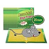 Wemk Piège à Souris Pièges à Rats, 20 Plaques Collantes Souris,...