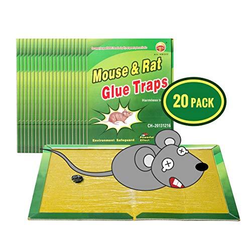 Wemk Piège à Souris Pièges à Rats, 20 Plaques Collantes Souris, Plaques de glu Anti Souris Anti Rat - Grande Taille 8'x12'