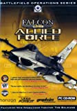 Falcon 4.0: Allied Force (PC CD) [Importación inglesa]