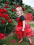 Ladybird - Costume pour tout-petits