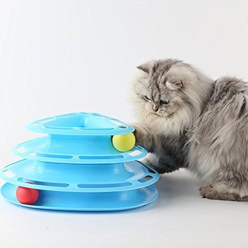 Brigamo  Kugelbahn Katzenspielzeug Intelligenzspielzeug für Katzen