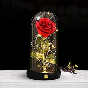 shirylzee Rosas Bella y la