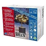 Konstsmide 6621-117 Micro LED Lichterkette/für Außen (IP67) / schutzisoliert/umgossen / mit Dimmer / 80 warm weiße Dioden/schwarzes Softkabel