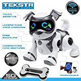 Teksta Voice Recognition Puppy Electronic Pet