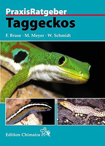Taggeckos (Praxis Ratgeber) - Taggecko