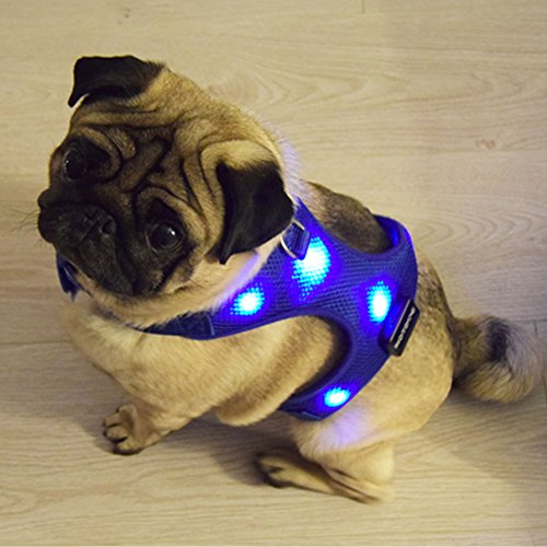 USB Rechargeable LED Dog Harness. Soft Mesh Harness No Pull Lighted Safety Harness. Increased Visibility & Safety Over LED Dog Collar. (Blue, Small)