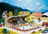 Faller 195382 - Special Edition - Kunsteisbahn (o. Funktion)