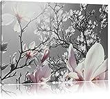 schöne Magnolie Blüten schwarz/weiß Format: 80x60 auf Leinwand, XXL riesige Bilder fertig gerahmt mit Keilrahmen, Kunstdruck auf Wandbild mit Rahmen, günstiger als Gemälde oder Ölbild, kein Poster oder Plakat