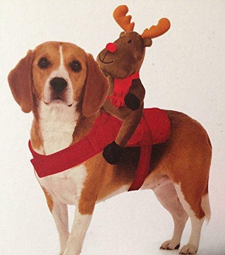 ehör Giddy Up Ride Me Rentier Kostüm Rudolph Pet Festive Geschenk Neuheit Outfit Geschirr Weihnachts Squeeze Spielzeug Verstellbarer Gurt (Neuheit Weihnachten Geschenke)