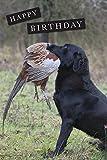 Black Labrador mit Fasan Geburtstagskarte Karte, Format A5 mit Hülle. blanko auf der Innenseite.