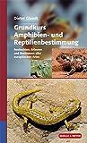 Grundkurs Amphibien- und Reptilienbestimmung: Beobachten, Erfassen und Bestimmen aller europäischen Arten