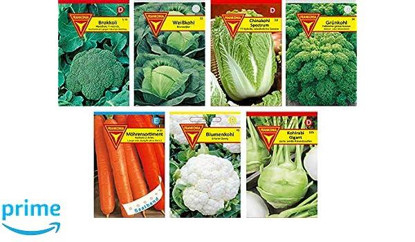 """Brokkoli /""""Calabrese natalino/""""   Saatgut ca 50  Samen Gemüse Top Qualität"""