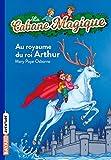 Tom et Léa sont envoyés au château du roi Arthur victime d'un mauvais sort. Le royaume est privé de toute allégresse et de trois de ses chevaliers. Les deux enfants partent dans l'Autre Monde pour déjouer la malédiction. Mais, pour réussir leur missi...