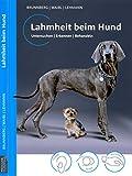 Lahmheit beim Hund: Untersuchen/Erkennen/Behandeln