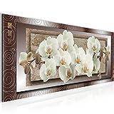 Bilder Blumen Orchidee Wandbild 100 x 40 cm Vlies - Leinwand Bild XXL Format Wandbilder Wohnzimmer Wohnung Deko Kunstdrucke Bunt 1 Teilig -100% MADE IN GERMANY - Fertig zum Aufhängen 205412a
