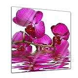 Glasbild - Orchidee II - 30 x 30 cm - Deko Glas - Wandbild aus Glas - Bild auf Glas - Moderne Glasbilder - Glasfoto - Echtglas - kein Acryl - Handmade