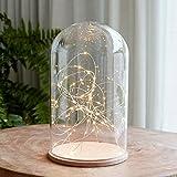 Glasglocke 30cm mit 50er LED Micro Lichterkette warmweiß auf silbernen Draht Lights4fun