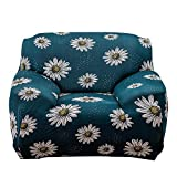 CWeep Stretch Sofa Cover Couch Slipcover, Machine Washable, Stylish Furniture Protector (2 Seater) Protector ((2 Seater) b)