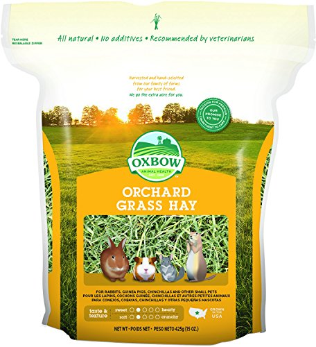 Orgran Free From Corn Crispbread 125 g (Pack of 6)