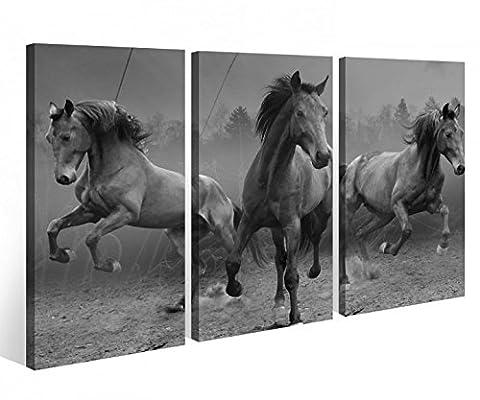 Leinwandbild 3 Tlg. wilde Pferde braun gallopierend Mustang Leinwand Bild schwarz weiß Bilder Keilrahmen Holz 9O1044, 3 tlg BxH:120x80cm (3Stk 40x
