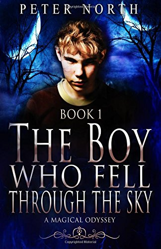 The Boy Who Fell Through The Sky: A Magical Odyssey: Volume 1