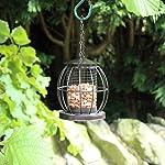 Kingfisher Mini Lantern Nut Feeder 4