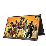 Prechen 10.1 Pulgadas 2K Monitor portátil, IPS Ultra HD 2560 x 1600 Pantalla LCD/LED, HDMI/Dos Tipo C (USB C),Monitor de Juegos para computadora Raspberry Pi/PS3 /PS4/ Xbox 360,ECC