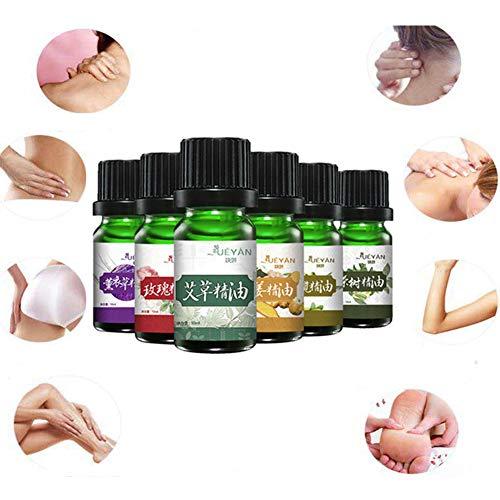 Ofanyia Organische Natürliche Ätherische Öle Set Body Massage Relax Oil Aromatherapie Ätherische Öle Kit (Lavendel, Wermut, Ingwer, Oliven, Rose, Teebaum) - Ingwer-raum-spray