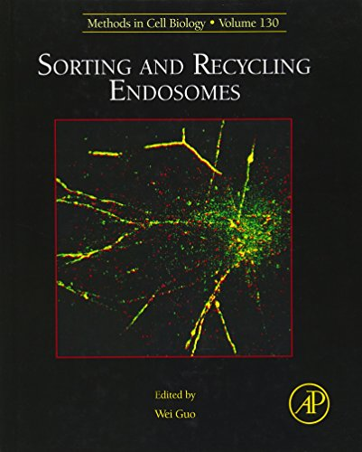 Sorting and Recycling Endosomes (Volume 130) (Methods in Cell Biology (Volume 130), Band 130)